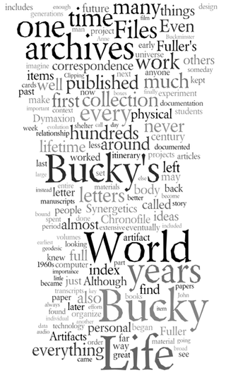 Buckywordcloud