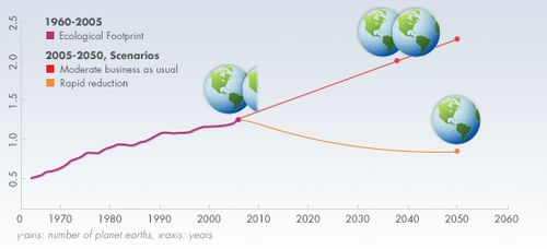 Footprint-1960-2003-graph.jpg_